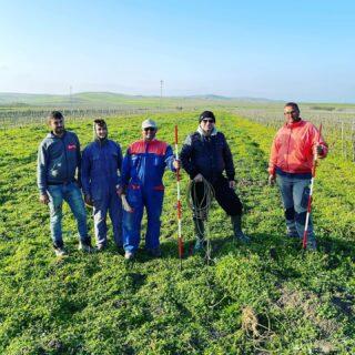 Finalmente è arrivato il momento tanto atteso, diamo inizio all'impianto del Frappato IGP Terre Siciliane con il quale daremo vita al Rosso Taillè bio 🍇🍷  La super squadra in azione 🚀💪🏼  Rebellious Wines 🌿🍷 ______________________ www.flaviawines.com  #frappato #vineyard  #marsala #nature #sicily #terroir #organic  #natural #grape #wines #italy #wine #vino #winelover #withewine #winery #winelovers #instawine #unitedstates  #vinorosso #winestagram #usa  #wines #etna #winelife #california #newyork  #winemaker #biologico #vinoitaliano #italianwines